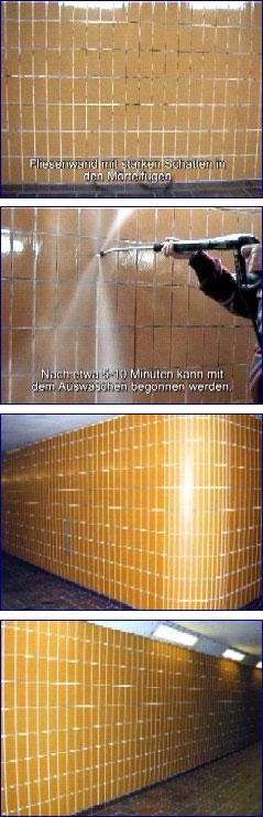 NewPro-GSE 60 Schattenentferner in Aktion