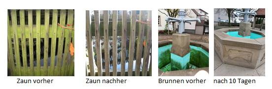 """Zaun GreenEx Magic – Der """" magische """" Dach, Fassaden- und Mauerreiniger"""